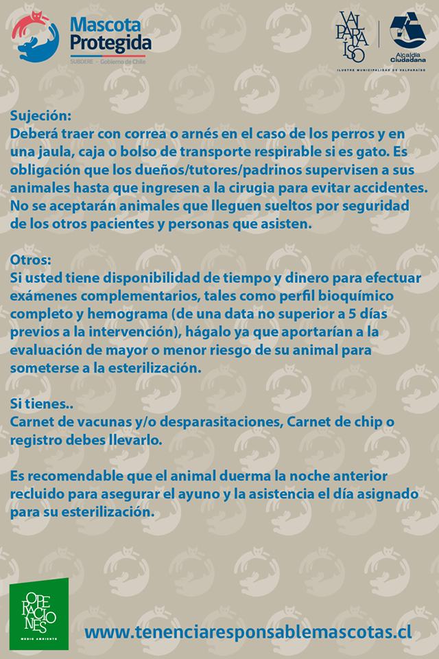 esterilizaciones3