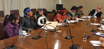 FA_mapuche2