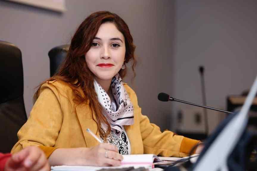 Comisión de Descentralización del Consejo Regional sesiona por primera vez presidida por el FrenteAmplio