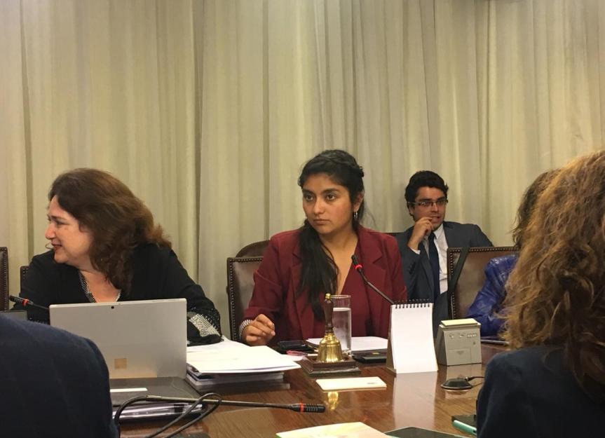 Diputada Camila Rojas asume presidencia de Comisión de Educación de laCámara