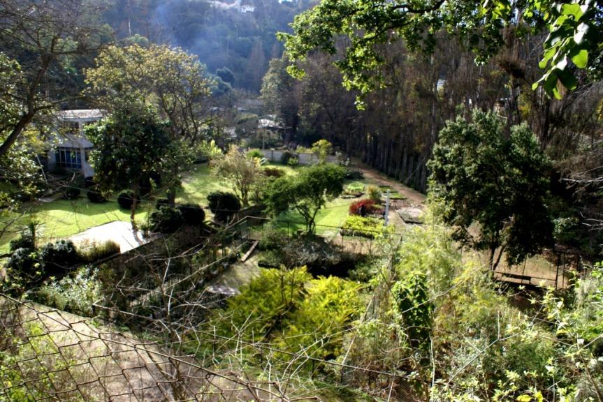 Comienza reactivación de espacios públicos, parques y plazas deValparaíso