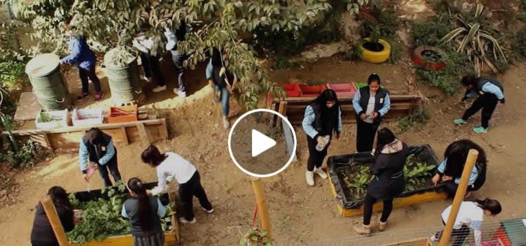 [VIDEO] Escuela República del Uruguay de Valparaíso da el ejemplo en el cuidado del medio ambiente