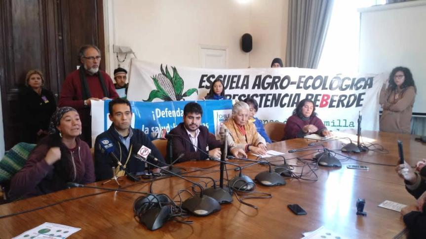 """Chile votó """"No"""" al TPP11: Región de Valparaíso registró porcentaje más alto de rechazo enplebiscito"""