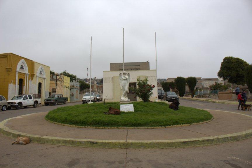 Municipalidad de Valparaíso retomará la administración de los cementeriosporteños