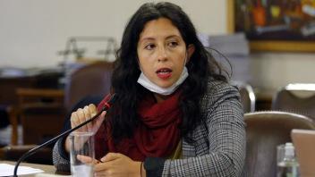 Comision de Trabajo de la Camara de Diputados 27/03/2020